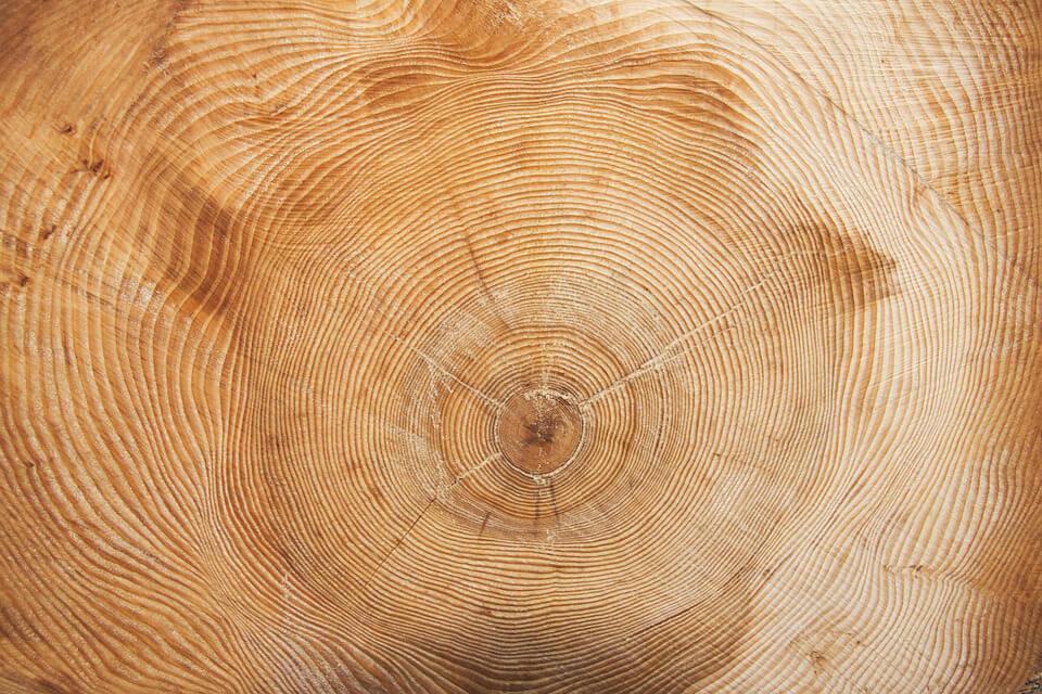 Certification Bodies — Responsible Wood