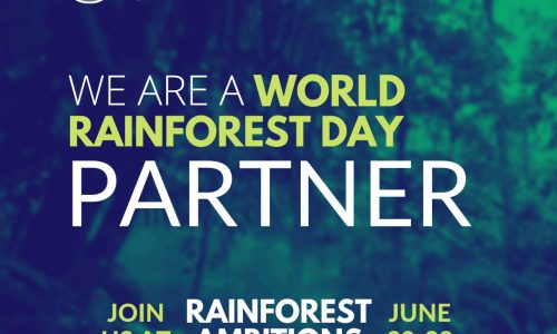 Celebrating our rainforests on World Rainforest Day 2