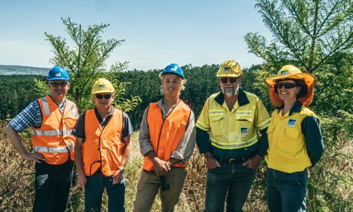 L-R: Tom Robinson, Jeff Ihle – District Manager Burnett and Downs HQPlantations, Shane Tetzlaff – Forester HQPlantations, Stuart Matthews – Joint Chief Executive Officer Austral Plywoods